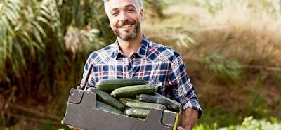 4 Manfaat Berkebun Bagi Kesehatan