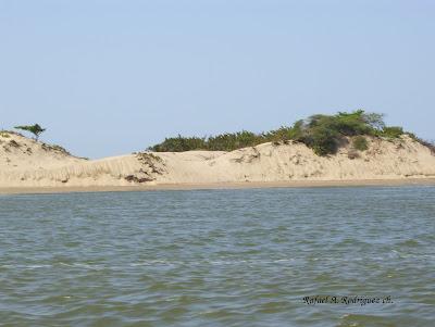 Isla de San Carlos