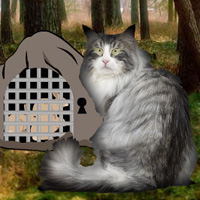 Wowescape Norwegian Cat Forest Escape