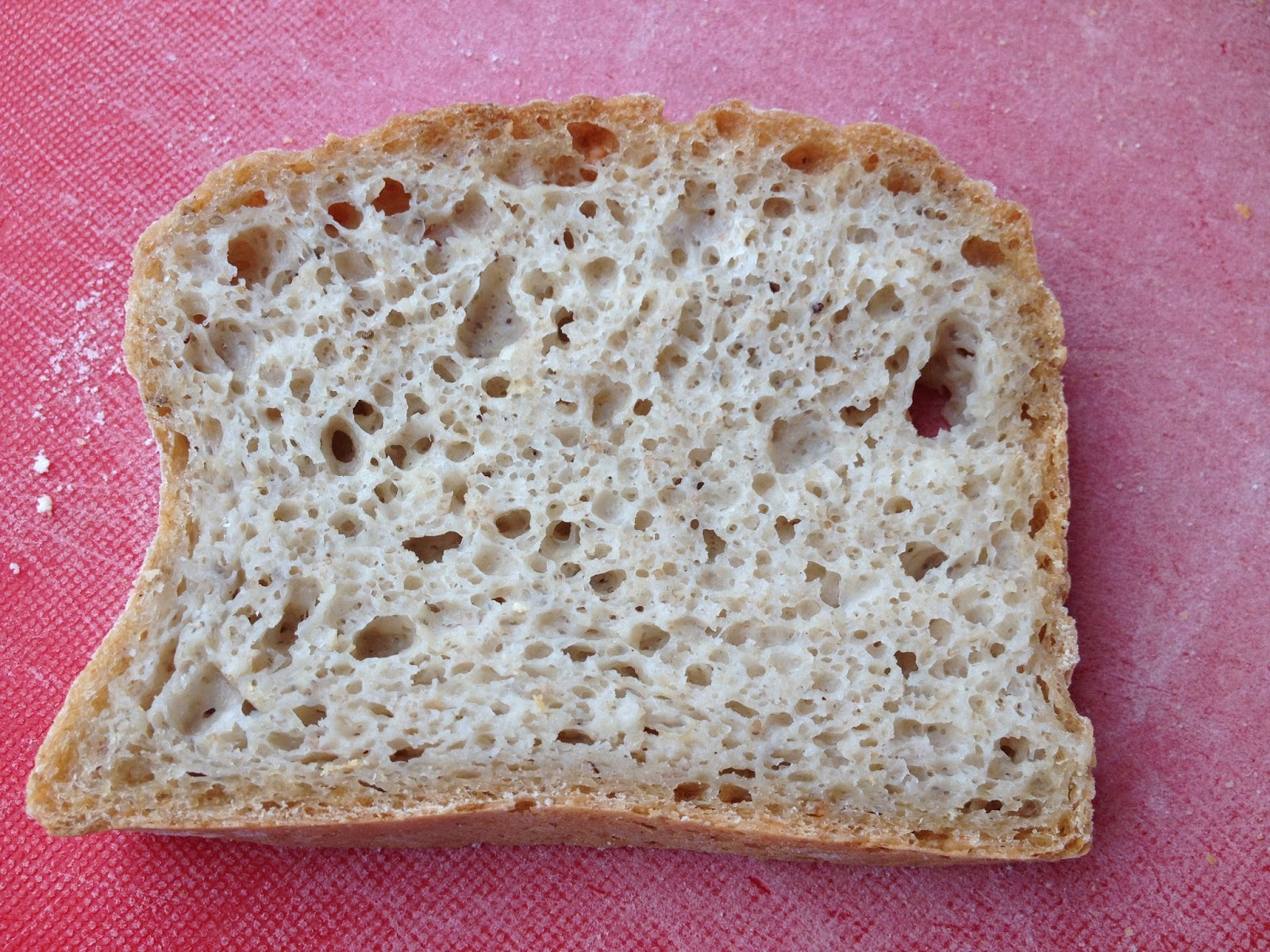 Pan de avena sin harina de trigo thermomix