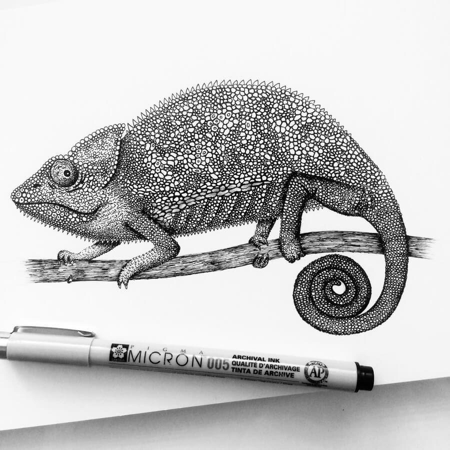 10-Chameleon-Raven-Pavneet-Sembhi-www-designstack-co