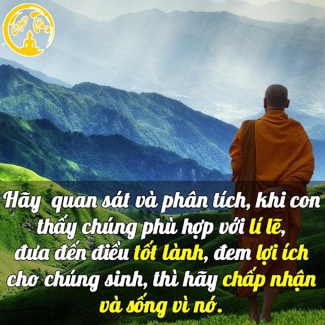 Những lời Phật dạy sẽ làm thay đổi cuộc đời bạn, cùng đọc và ngẫm nhé!