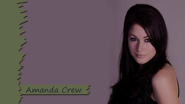 Amanda Crew HD Wallpapers Free Download