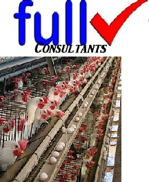 Poultry farming business free business plan template completefmc poultry farming business free business plan template flashek Images
