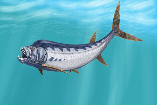 Monster Monday: Xiphactinus, Prehistoric Monster Fish