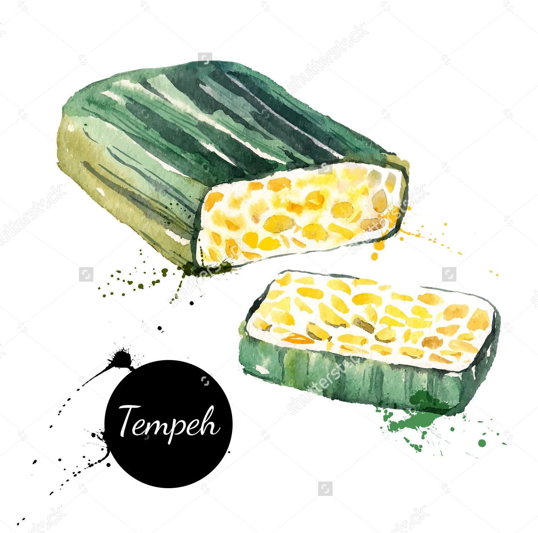 Tempe adalah makanan yang sangat kaya gizi Selain enak tempe mengandung vitamin mineral anti oksidan dan asam lemak yang baik bagi kesehatan seperti