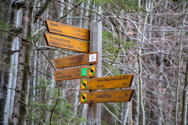 Auf vergessenen Wegen von Finsterau nach Buchwald  Wandern im Bayerischen Wald  Wanderung Nationalpark Bayerischer Wald 06