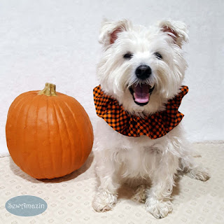 Halloween Checkered Plaid Dog Scrunchie Ruffle, Orange and Black