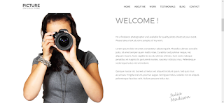 Divi - Wordpress Photography Theme Free Download