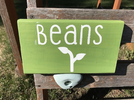 DIy garden signs from cookies coffee and crafts