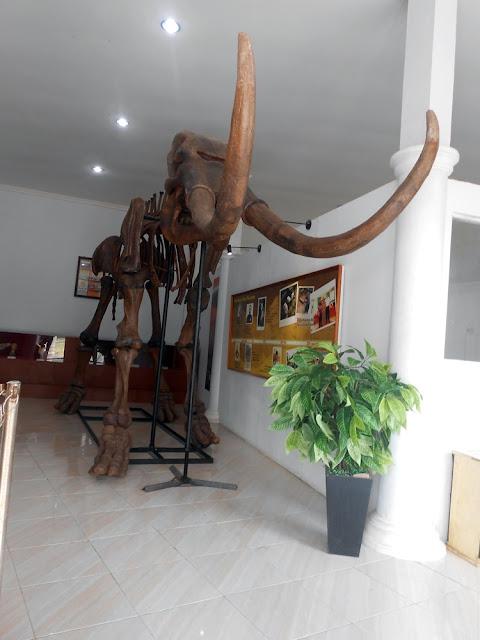 replika gajah purba