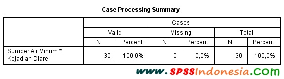 Interpretasi Output Uji Chi Square dengan SPSS-Case Processing Summary