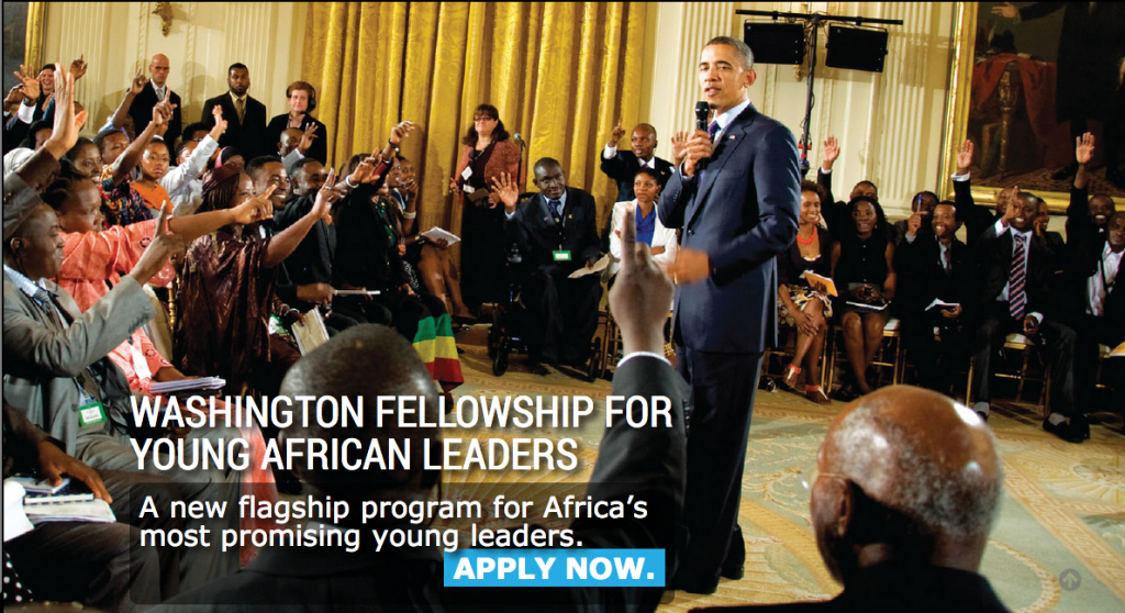 Washington Fellowship for Young African Leaders