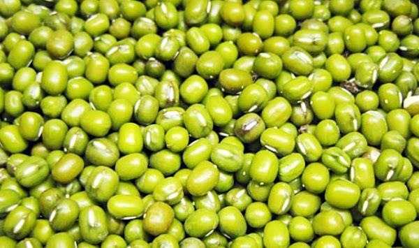 Manfaat dari Kacang Hijau untuk Kesehatan