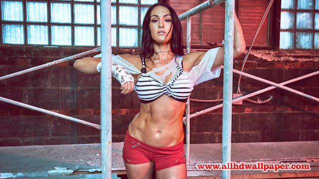 Download Nikki Bella Hd Wallpapers