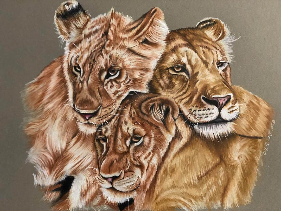 11-Lion-Cubs-Eichenberger-Rodriguez-Colored-Wildlife-Drawings-www-designstack-co