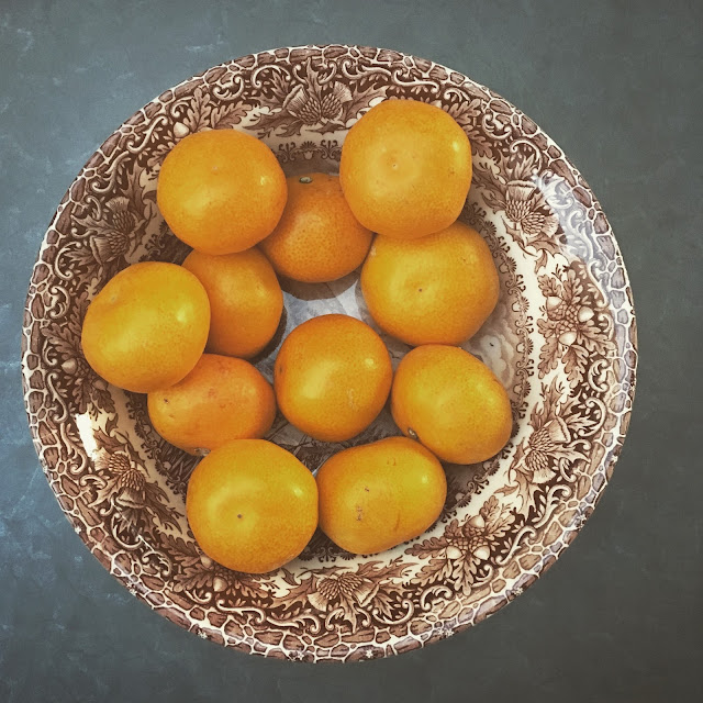 Dovolená v Chorvatsku - září a mandarinky