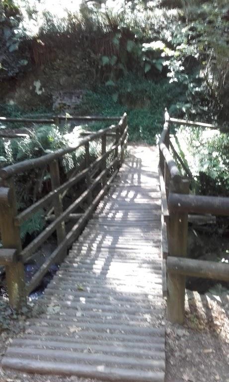 Ponte pedonal do Parque da Cabreia