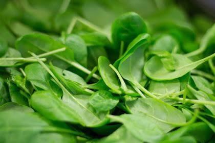 Manfaat mengkonsumsi daun bayam dan bahayanya