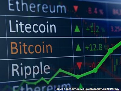 Новые перспективные криптовалюты в 2019 году