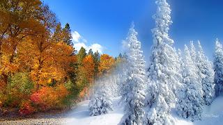Calendario Mágico: Solsticio de invierno