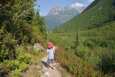 Balu Pass Trail, Glacier National Park of Canada