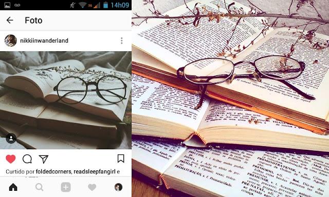 livros oculos e galho tumblr