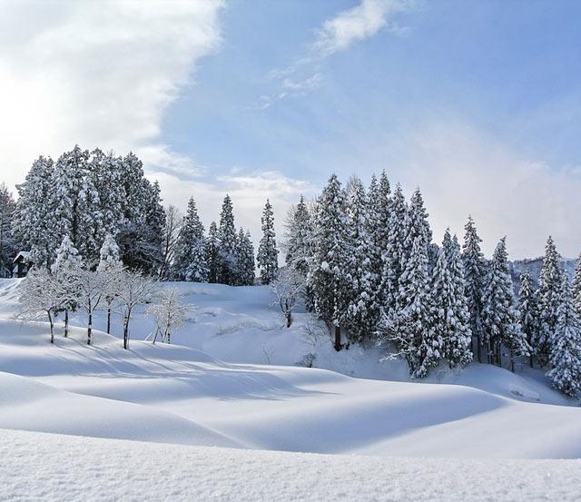 Посрещане на Новата година в зимните ни курорти