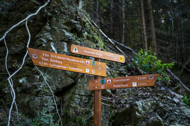 Sonnenaufgang an der Rabenklippe  Luchsgehege und Eckerstausee  Wandern in Bad Harzburg 12