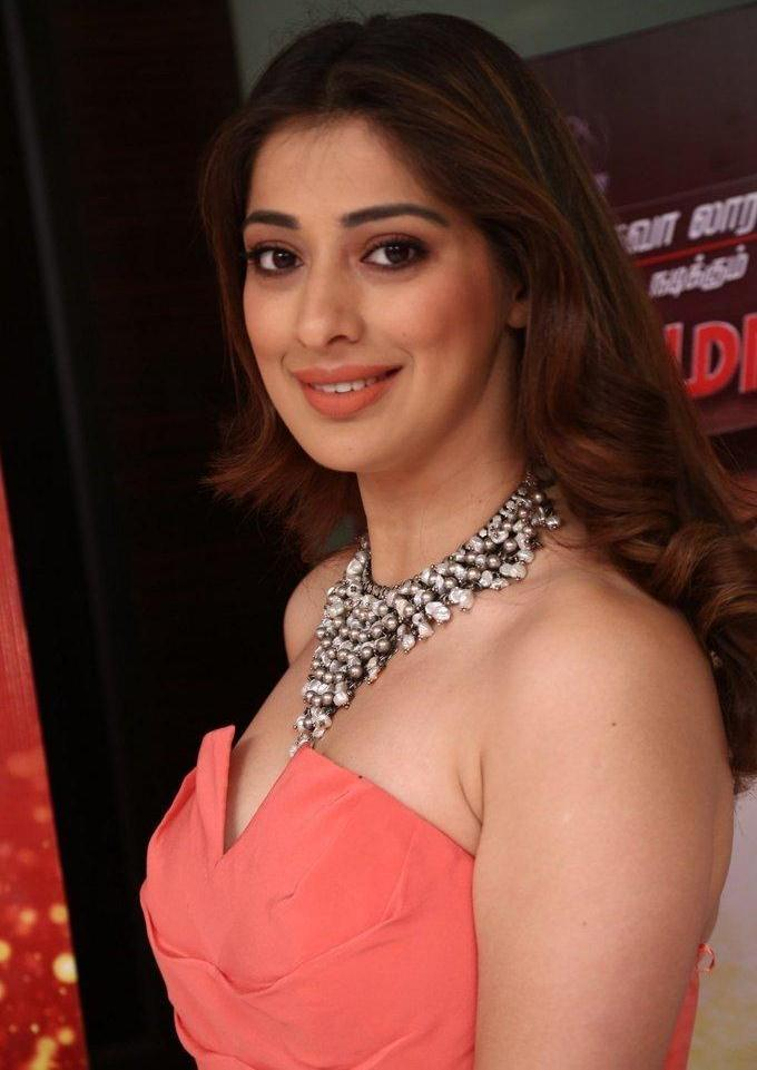 Tamil Actress Raai Laxmi 2017 Hot Images In Pink Dress