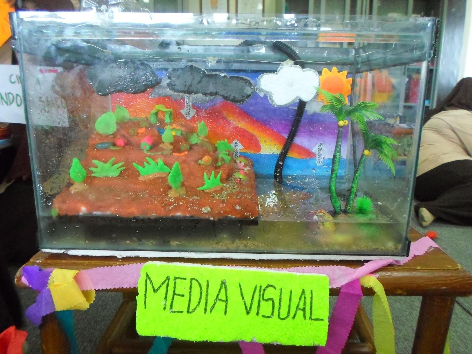 Fery Mirnawati Media Pembelajaran Ipa Kelas Sd Gambar Anak