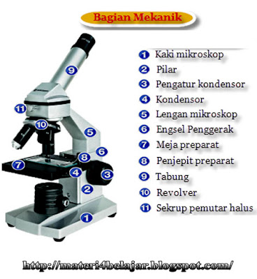 Bagian Bagian Mikroskop dan Fungsinya Beserta Gambar Bagian Bagian Mikroskop dan Fungsinya Beserta Gambar