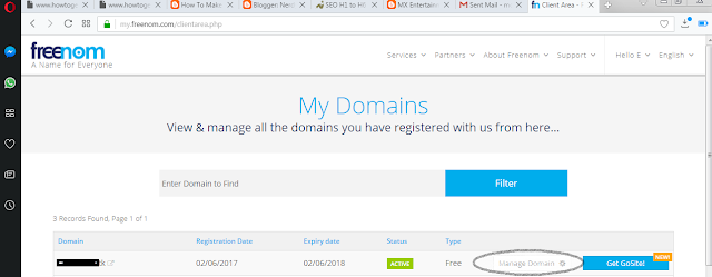 Click on the Manage Domain button