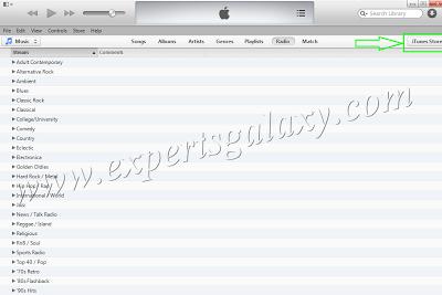 iTunes Store Option
