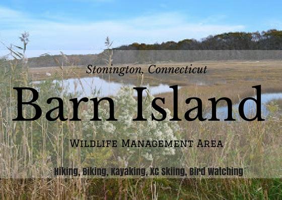 Katie Wanders : Barn Island - Stonington, Connecticut