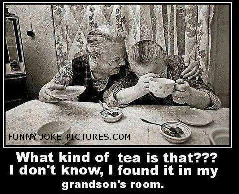 Funny Old Ladies Tea Time Caption