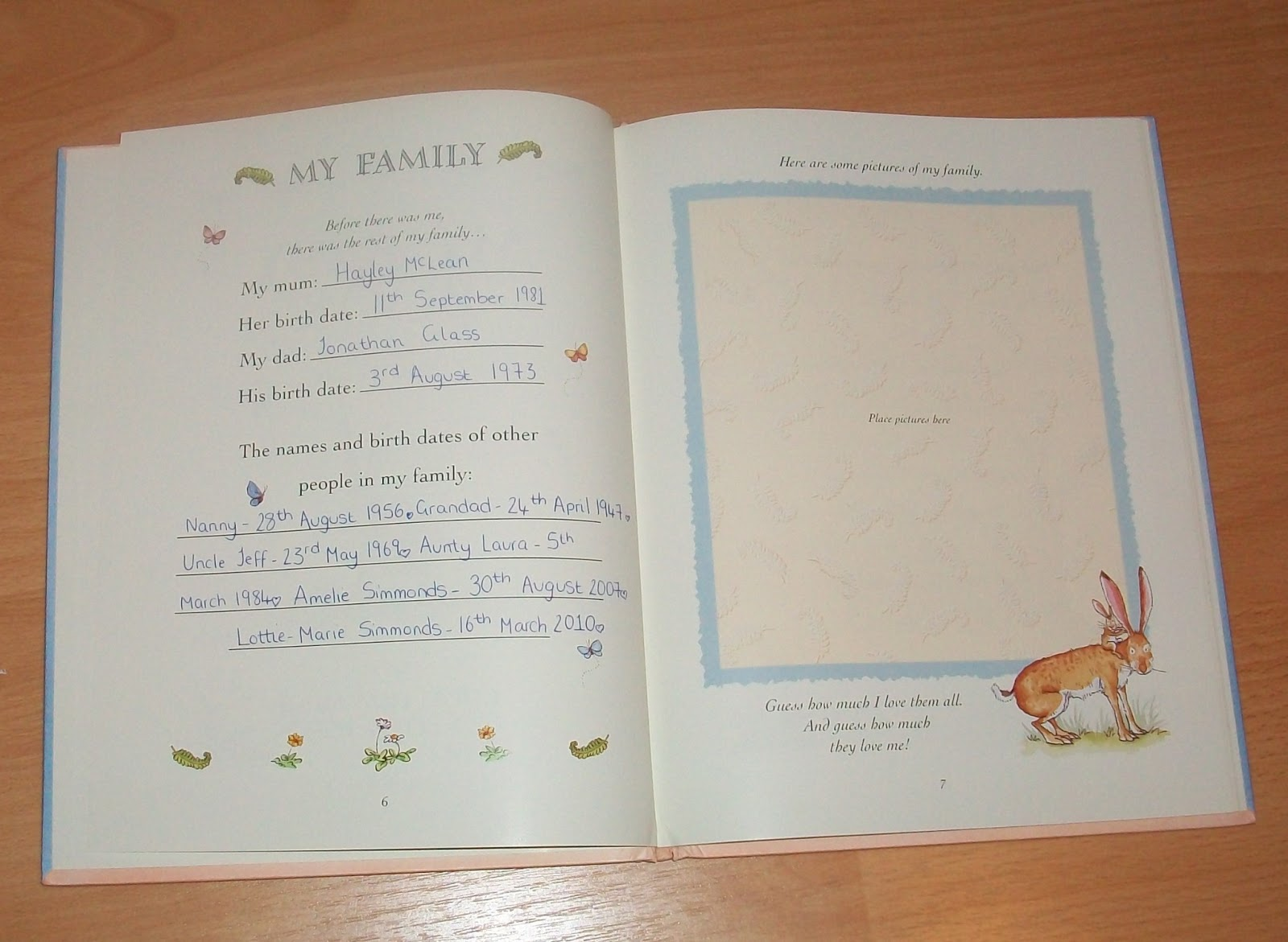 Baby Diary Book