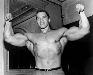 Arnold style workout Split