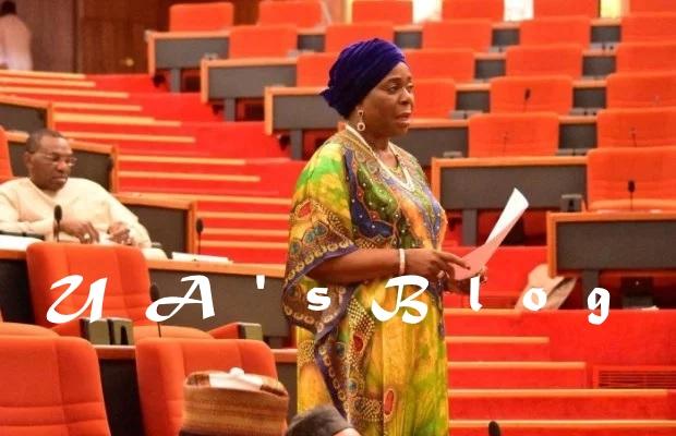 NASS crisis: Senator Olujimi reveals how PDP made Saraki Senate President, explains why APC can't impeach him