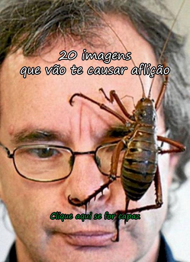 http://www.pitacodoblogueiro.com.br/20-imagens-que-causam-aflicao/