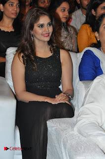 turodu Telugu Movie Audio Launch Stills  0004.jpg