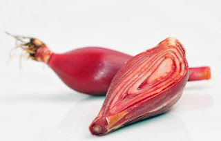 how to heal diabetes using shallot