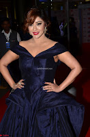 Payal Ghosh aka Harika in Dark Blue Deep Neck Sleeveless Gown at 64th Jio Filmfare Awards South 2017 ~  Exclusive 017.JPG
