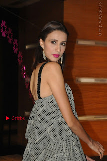 Indian Actress Model Alesia Raut Stills in Sleeveless Long Dress  0010.JPG