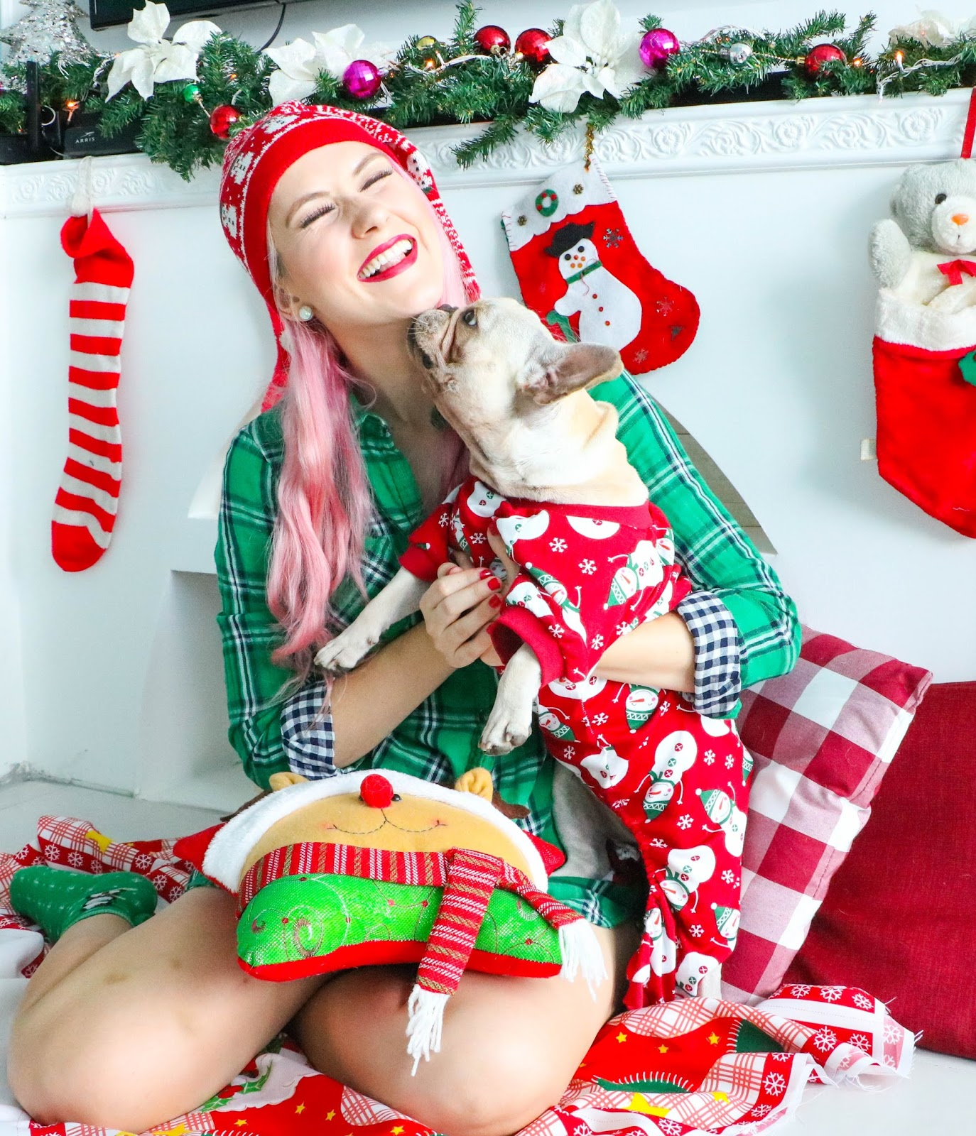 Cute Christmas photoshoot with pet dog