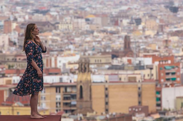 O Olmo e a Gaivota (2015) de Petra Costa, Lea Glob