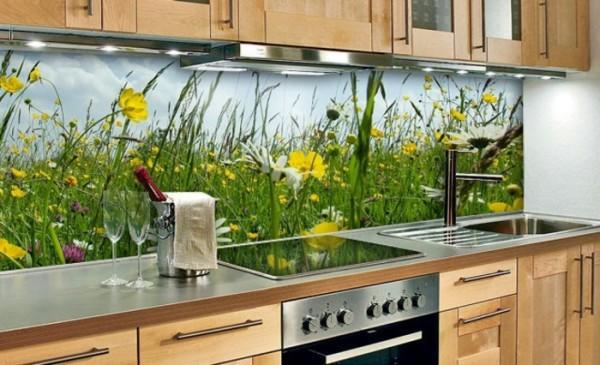 Designer Back Painted Glass On Rear Wall Of Kitchen Platform Part 72