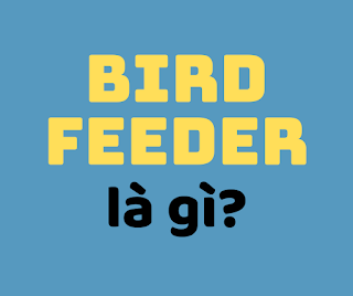 bird feeder la gi