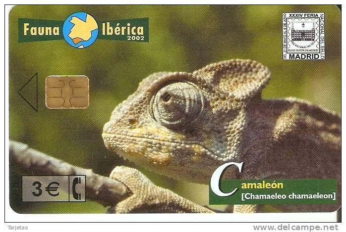 Tarjeta telefónica Camaleón (Chamaleo chamaleon)