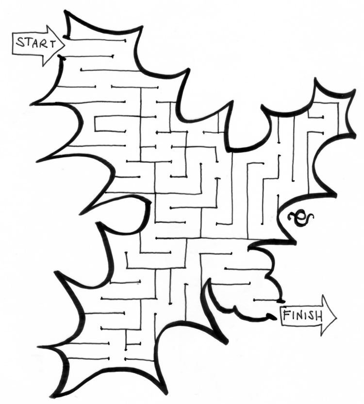 http://4.bp.blogspot.com/-huvQGCpzuik/UM-VMuaFhRI/AAAAAAAAAwk/vbk_eaiLpV4/s1600/christmas-holly-maze-for-ch.jpg